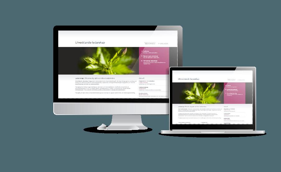Snygg webbdesign galleri hemsidor 2018 Utvecklande Ledarskap hemsida webbdesign av webbyrån Hjälp med hemsidan