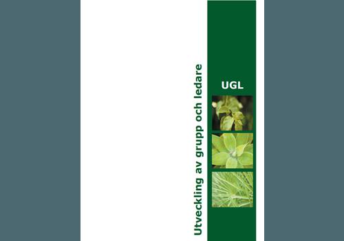 Snygga broschyrer och trycksaker design av Hjälp med hemsidan
