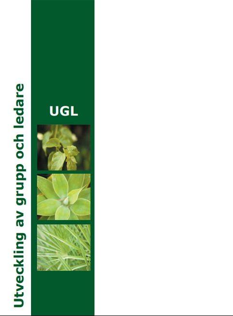 UGL broschyr exempel på trycksaker jag gjort till företag - design av Hjälp med hemsidan