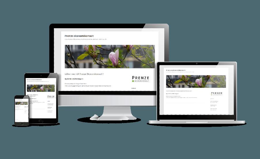 WordPress hemsida - webbdesign Galleri Snygga hemsidor 2018 Prenze Ekonomikonsult Täby Webbdesigner Annika Vallgren Hjälp med hemsidan
