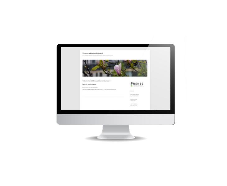 Webbsida till ekonom