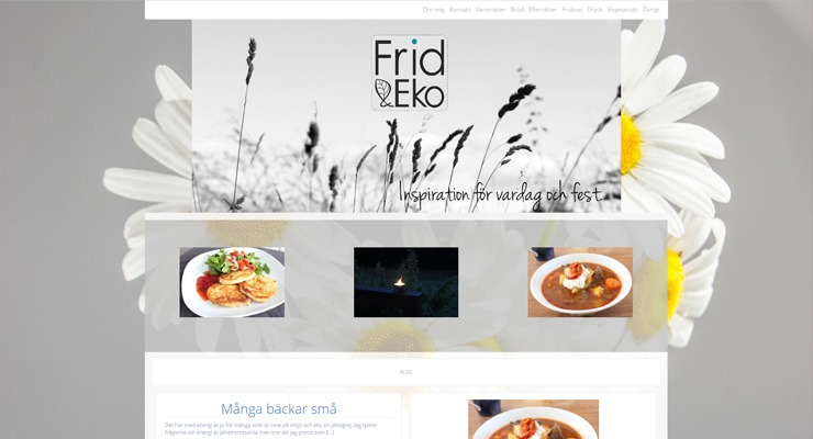 Galleri med hemsidor Hjälp med hemsidan Stockholm Hjälp att göra snygg hemsida Hemsida snabbt