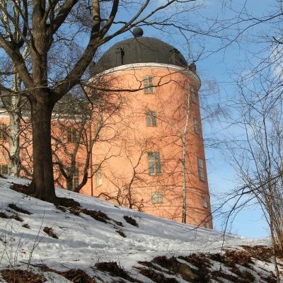 Hemsida Uppsala