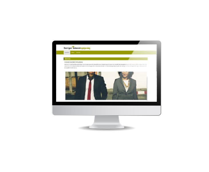 hemsida för inkomstupplysningar