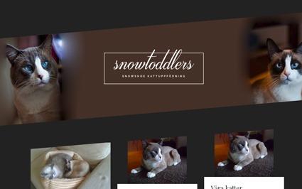 Snygg hemsida exempel och inspiration Snygga hemsidor 2018Hjälp med hemsidan har gjort hemsida till Snowtoddlers