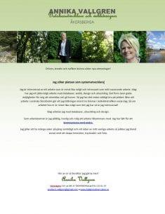 Snyggt CV exempel - design av Hjälp med hemsidan
