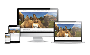 Snygga hemsidor exempel 2018 Ormöga Kamelranch Öland Borgholm Webbdesign Hjälp med hemsidan