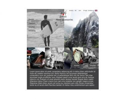 Ashiva layout hemsida
