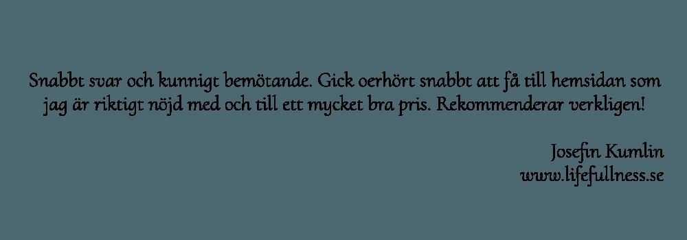 Webbyrå som har många goda referenser och nöjda kunder: Hjälp med hemsidan en Webbyrå i Stockholm