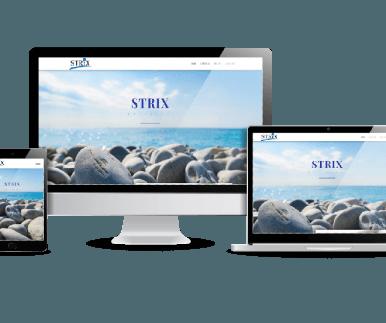 Strix revision