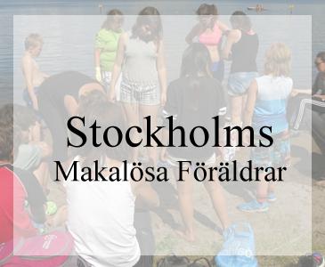 Snygga webbsidor till förening Design av hemsidan Hjälp med hemsidan Webbdesign i Åkersberga och Stockholm Galleri med hemsidor