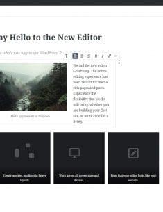 Gutenberg för WordPress