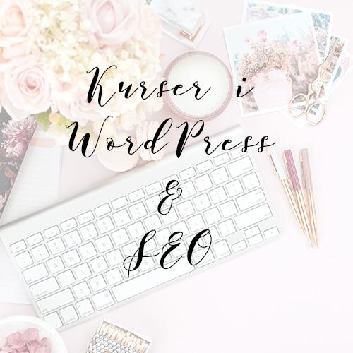 Kurser i WordPress och SEO