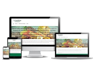 Snygg Webbdesign Hemsida till friskvårds rådgivning webbdesign av Hjälp med Hemsidan
