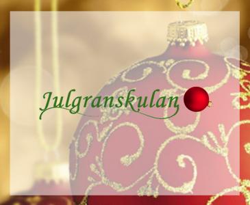 Hemsida till Julgranskulan