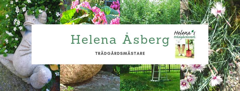 Helena Åsberg Facebook bild