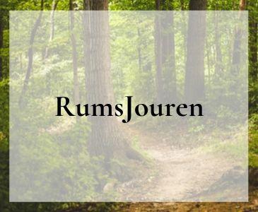 Rumsjouren